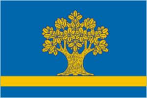 Dubovka, Dubovsky District, Volgograd Oblast - Image: Dubovka flag (Volgograd region)