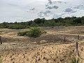 Dunes Charmes Sermoyer 12.jpg