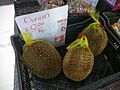 Durian for sale in Sydney store.jpg