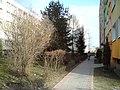 Dzierzoniow, Poland - panoramio - lelekwp (76).jpg