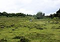 East of Eyeworth Wood - geograph.org.uk - 1407491.jpg