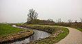 Eenzame wilg (Salix) aan fietspad om Langweerderwielen (Langwarder Wielen). Oostkant 02.jpg