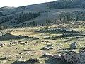 Elapadt termálforrás (Dead thermal spring) - panoramio.jpg