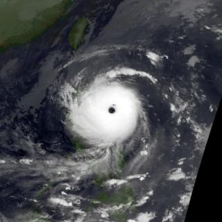 Typhoon Elsie (1989) Pacific typhoon in 1989