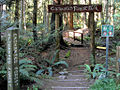 Enchanted Forest Nature Park (7799166212).jpg