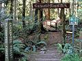 Enchanted Forest Nature Park (7799166212).jpg