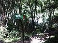 Encontro dos Rios - panoramio.jpg