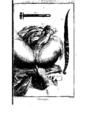 Encyclopedie volume 2b-115.png