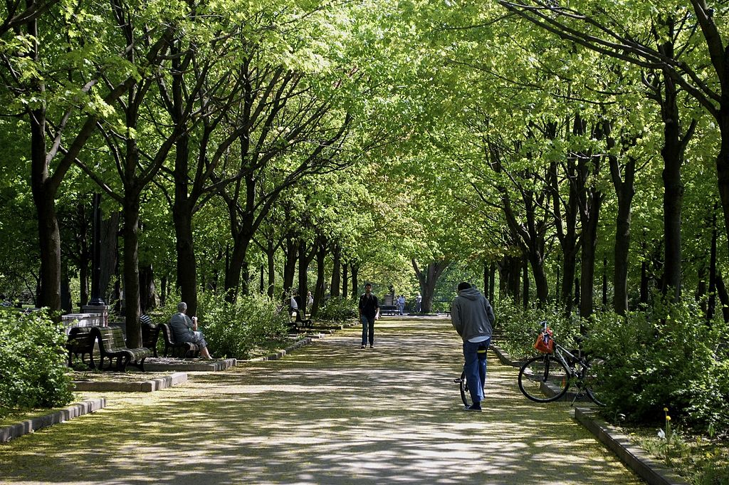 Montreal Botanical Garden and La Fontaine Park- The Two Most Restful Places Of The City