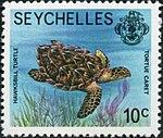 Eretmochelys imbricata 1977 stamp of Seychelles.jpg
