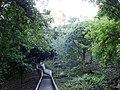 Escadaria - panoramio.jpg