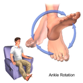 Exercise Ankle Rotation.png