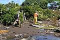 FEMA - 42033 - Hazardous waste material crew in the field in American Samoa.jpg