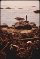 FLOTSAM ON BEACH - NARA - 542976.tif