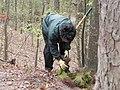 FL Tree Army 2011 (5683178365) (2).jpg