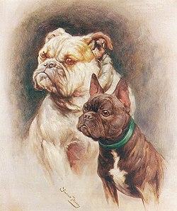 Fannie Moody - English and French Bulldogs.jpg