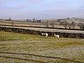 Farm below Moorhouse Gate - geograph.org.uk - 1098662.jpg