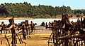 Federación, Entre Ríos, Argentina - panoramio (42).jpg