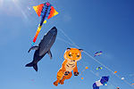 Festival of the Winds (7960182956).jpg