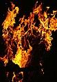 FeuerFlamme2.JPG