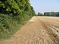 Field boundary from footpath - geograph.org.uk - 983673.jpg