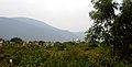 Fields view near Bakkannapalem.JPG
