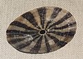 Fissurella maxima IMG 5345 Beijing Museum of Natural History - NHM of Guangxi - Gulf of Tonkin collection - Copy.jpg