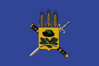 Флаг Путятинского района
