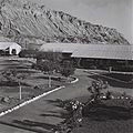 Flickr - Government Press Office (GPO) - THE CLUB HOUSE IN THE WORKER'S CAMP AT THE SODOMt POTASH FACTORY IN THE DEAD SEA..jpg