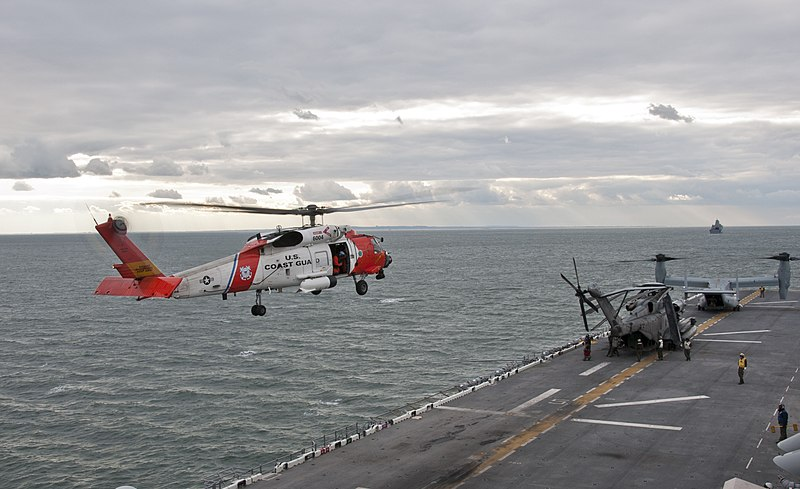 Flickr - Official U.S. Navy Imagery - U.S. Coast Guard helicopters land aboard USS Wasp..jpg