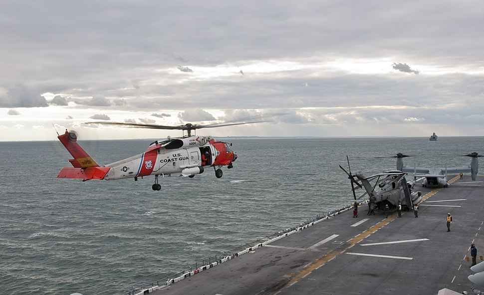 Flickr - Official U.S. Navy Imagery - U.S. Coast Guard helicopters land aboard USS Wasp.