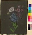 Floral Design MET 28.40.14.jpg
