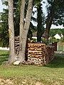 Fontaine-la-Gaillarde-FR-89-tas de bois-a3.jpg