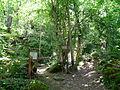 Fontanigorda-bosco delle fate1.jpg