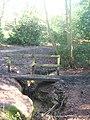 Footbridge in Nellington Wood - geograph.org.uk - 1733766.jpg