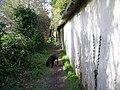 Footpath beside cobb wall, Homington - geograph.org.uk - 746998.jpg