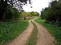 Footpath to Bag Enderby - geograph.org.uk - 577690.jpg