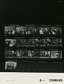 Ford B0485 NLGRF photo contact sheet (1976-07-03)(Gerald Ford Library).jpg