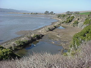 North Pacific Coast Railroad - Former railroad grade adjacent to Tomales Bay viewed from California State Route 1.