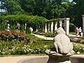 Forst-Rosengarten - Froschbrunnen (Rose Garden - Frog Fountain) - geo.hlipp.de - 38995.jpg