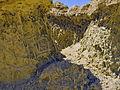 Fossil Mangrove Roots, Wadi Hitan.jpg
