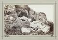 Fotografi av Bonchurch. Isle of Wight, England - Hallwylska museet - 106696.tif