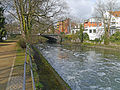 Frankfurt-Roedelheim-Bruecke-Auf-der-Insel-vom-Brentanopark-2016-Ffm761.jpg