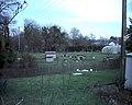 Free-range poultry Chwilog - geograph.org.uk - 355565.jpg