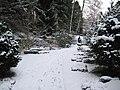 Friedhof Fluntern Terrasse.jpg