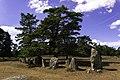 Gålrums gravfält 02.jpg