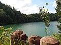 Göl Manzarası... - panoramio.jpg