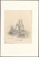 Galago senegalensis - 1788-1863 - Print - Iconographia Zoologica - Special Collections University of Amsterdam - UBA01 IZA1000534.tif
