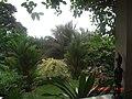 Garden - panoramio (8).jpg