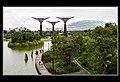 Gardens by the Marina Bay-07 (8323824498).jpg